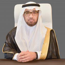 المديفر يؤكد على قوة قطاع التعدين الاقتصادية وجاهزيته للاستثمار في المملكة
