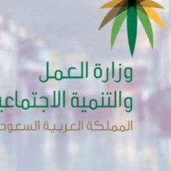 """تعيين الدكتورة """"قمر دياب"""" رئيسًا لمجلس سيدات الأعمال والاستثمار الدولي"""