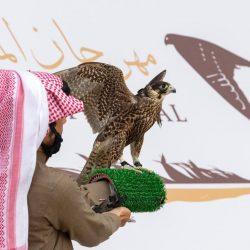 سهرة فنية تشكيلية مع عبدالله الرشيد