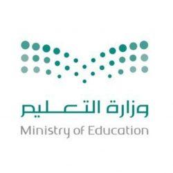 """بمشاركة 19 فنانًا وفنانة """"الترفيه"""" تُعلن عن 14 حفلًا غنائيًا بحضور 47 ألف شخص في جدة"""