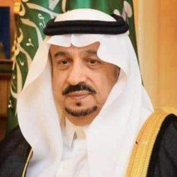 وزير الخارجية يبحث مع دومينيك راب المستجدات الإقليمية والدولية