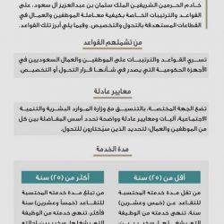 صورة أخوية تجمع ولي العهد والرئيس المصري